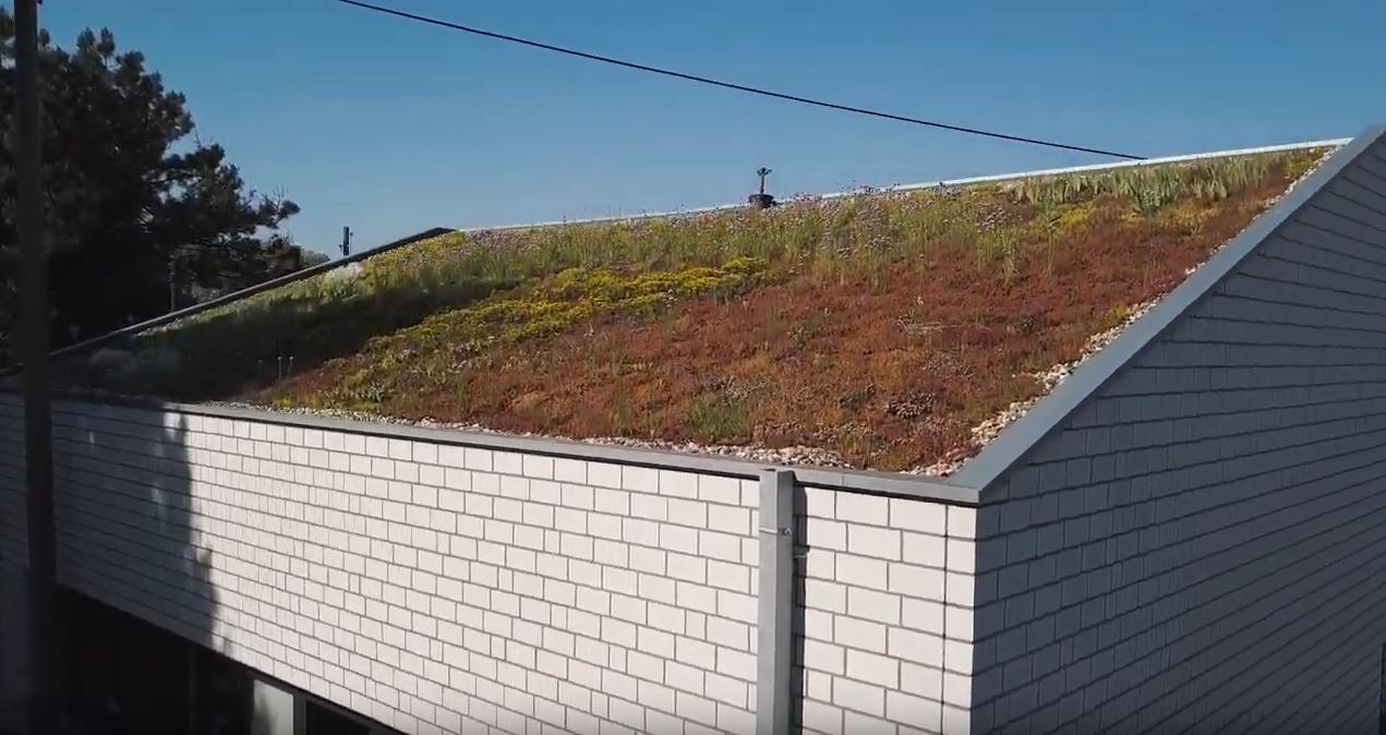 Dachbegrünung in Wesel - Schnickers Bedachungen